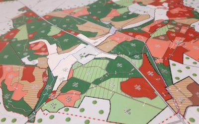 La cartographie forestière