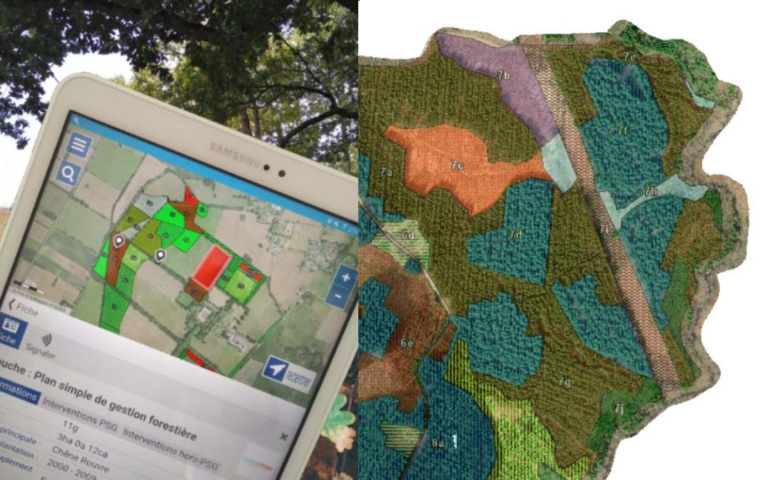 Le SIG au service des forestiers (2/3): La géomatique en forêt