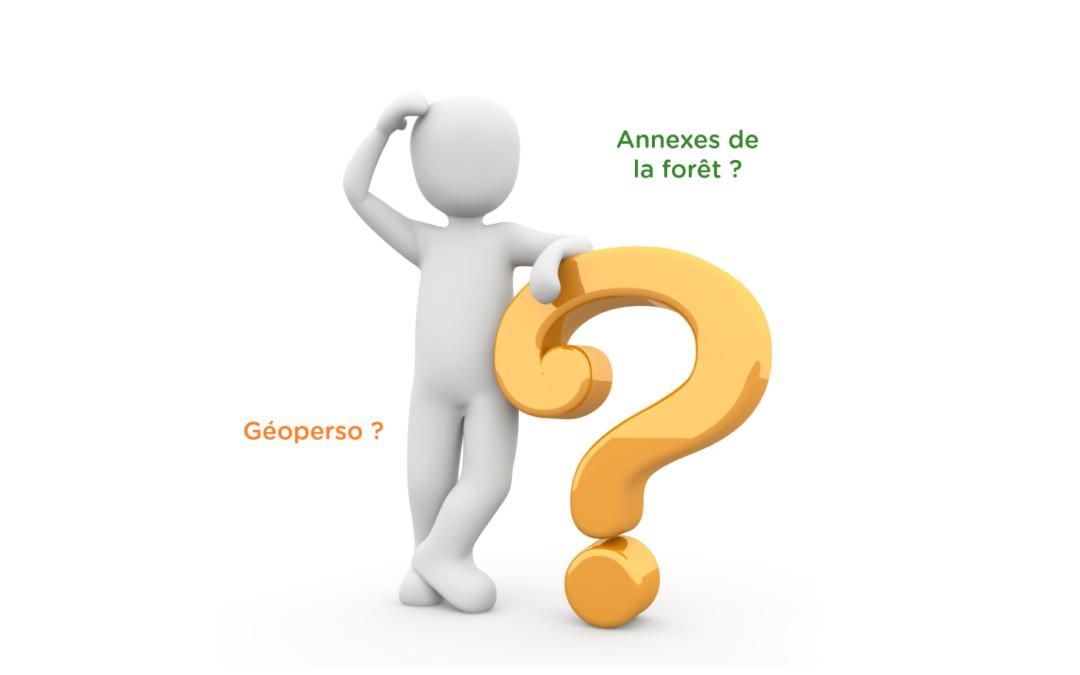 Dessiner sa forêt: GéoPerso ou annexes de la forêt?